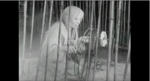Fig. 4 : Le fantôme – Kumonosu-jô