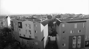 LaHaine.09.